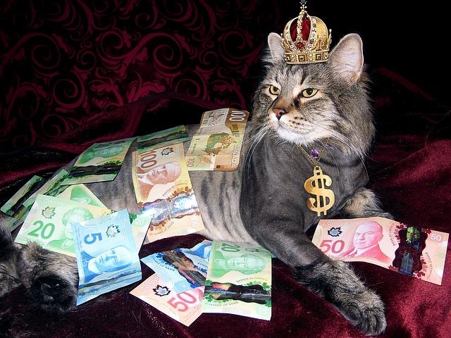 money-1144553_640
